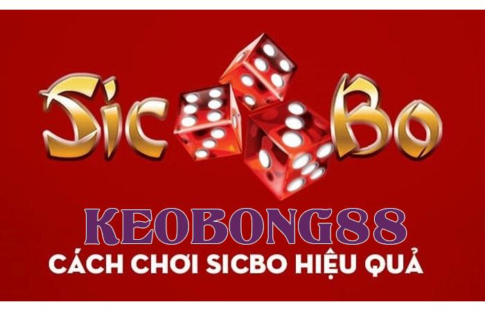 sicbo1 1